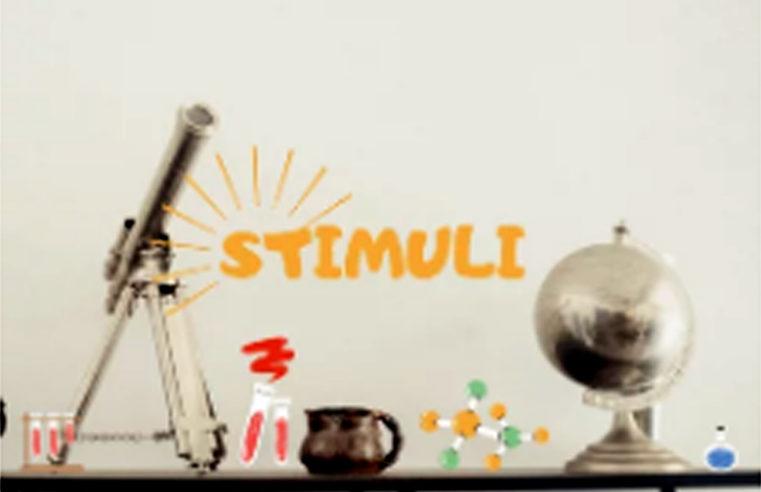 Stimuli